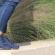 כמה חשוב באמת לנעול נעליים אורתופדיות?